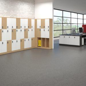 Mulit-Leveled Lockers with Boot Storage